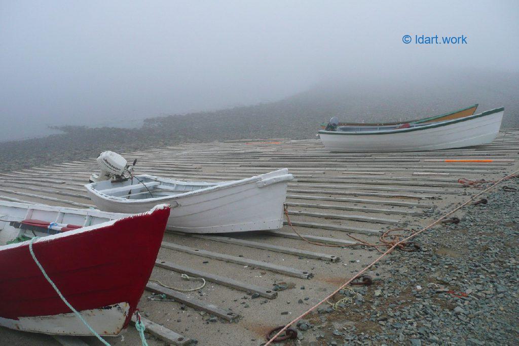 whale Cove photo